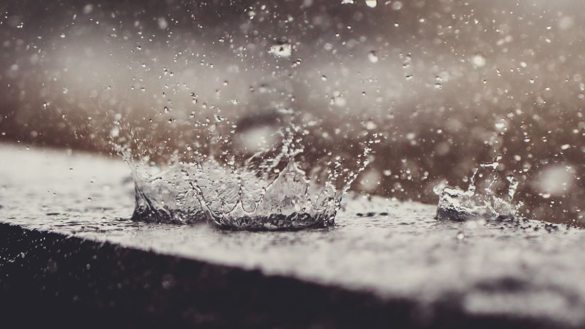 splashes of water in the rain