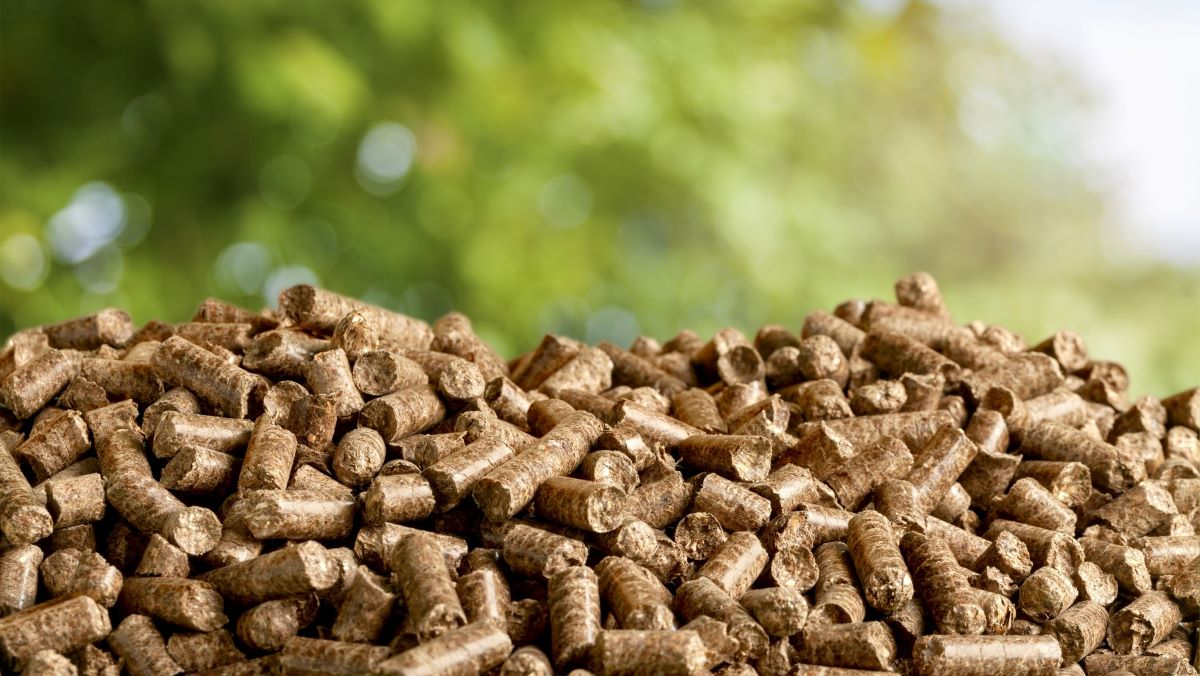 Biomass pellets in a heap