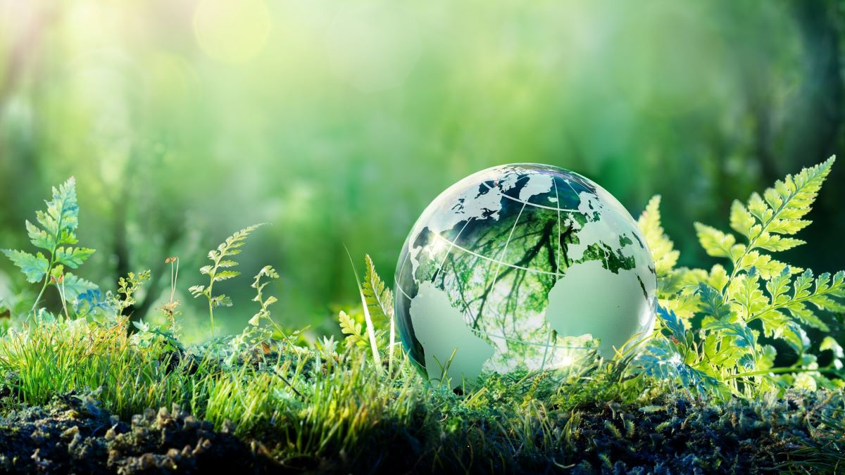 World in a green leafy background