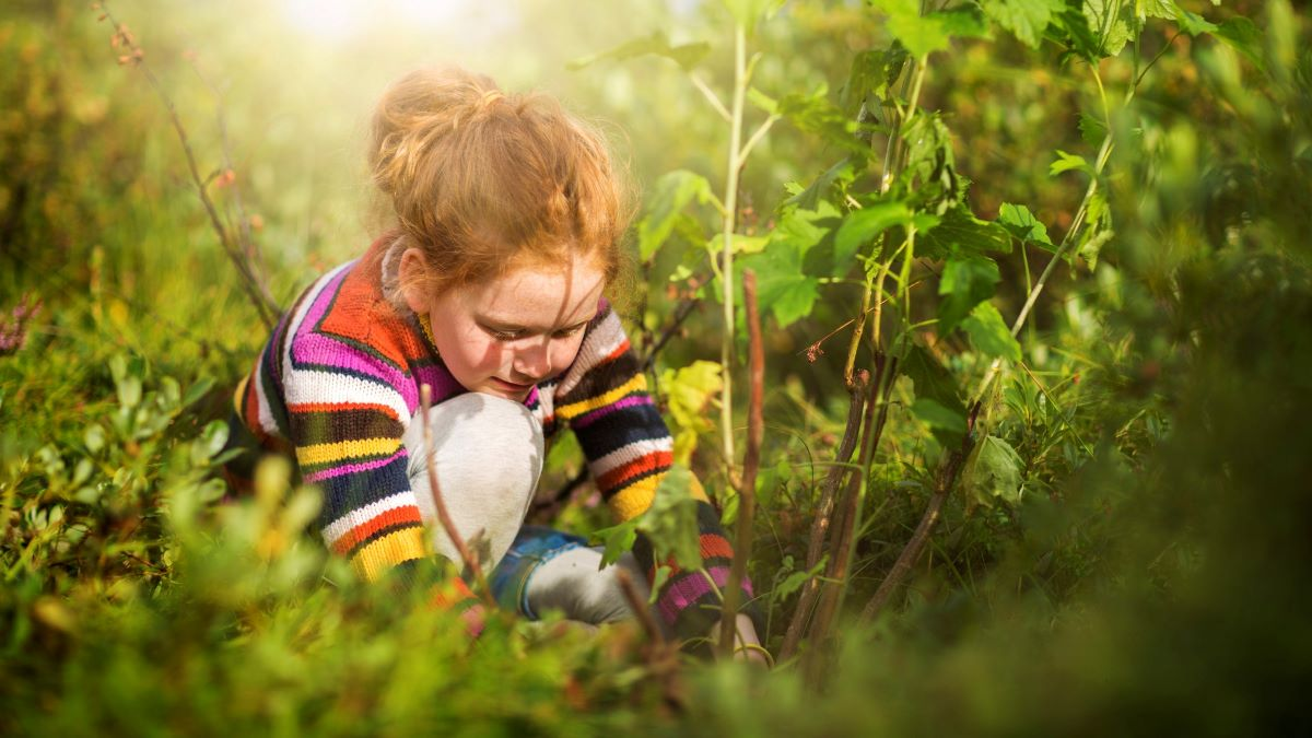 Small girl planting a tree in a field