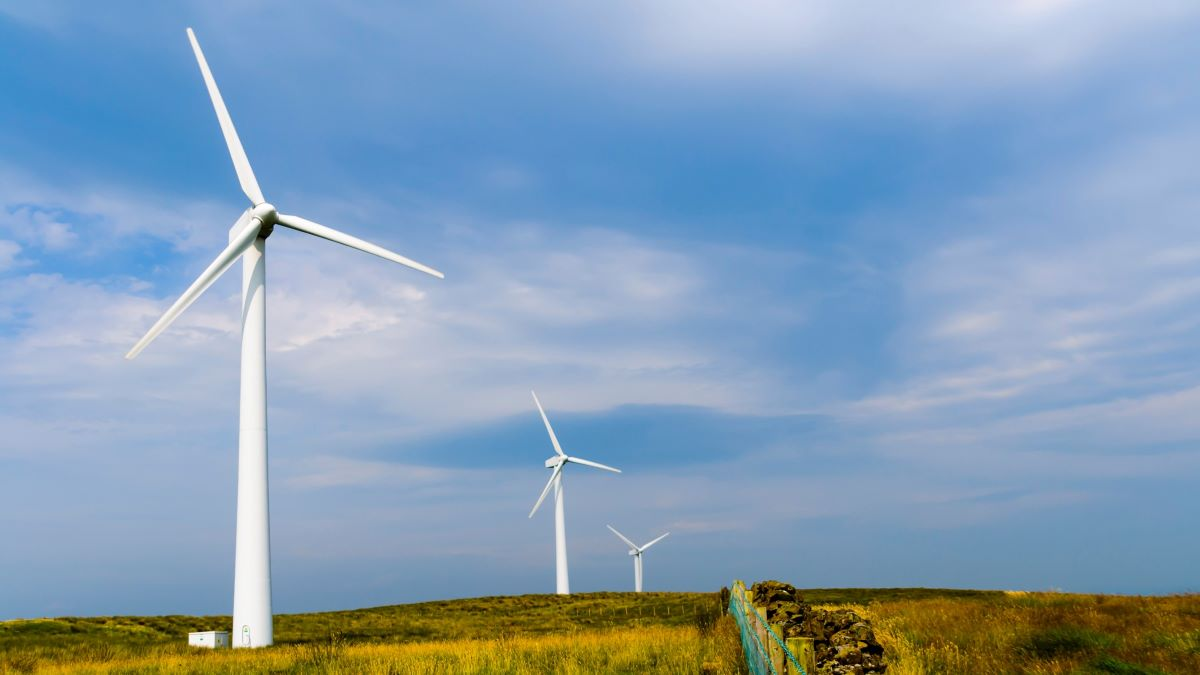 Wind turbines in a field in a rural area