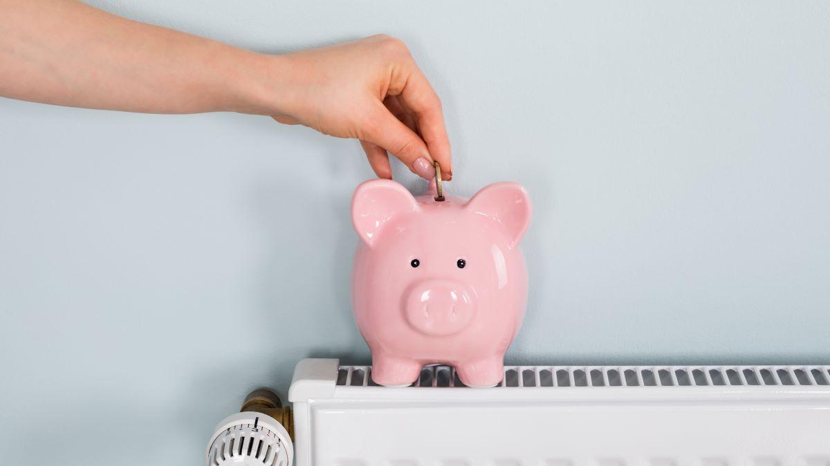 hand putting money into a piggy bank