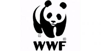 WWF Cymru
